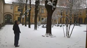 cortile con nevicata